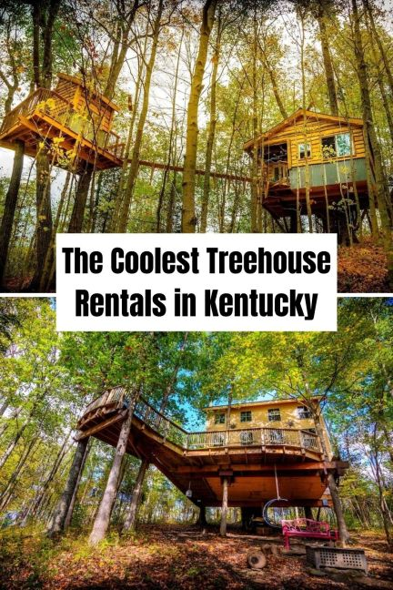 Coolest Treehouse Rentals in KentuckyCoolest Treehouse Rentals in Kentucky