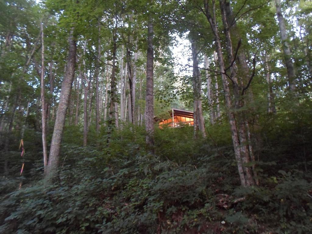 Mountain Retreat Tree House NC