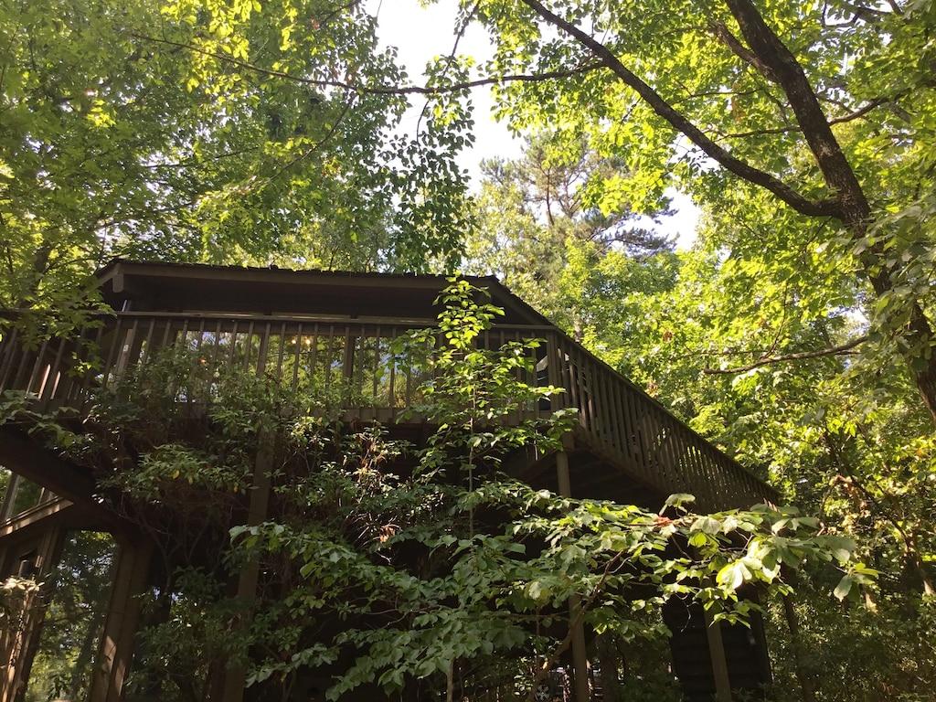 Modern Mountain Treehouse Rental in Georgia