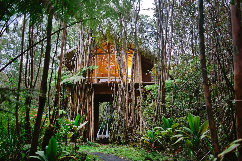 Dreamy Tropical Tree House Hawaii Airbnb