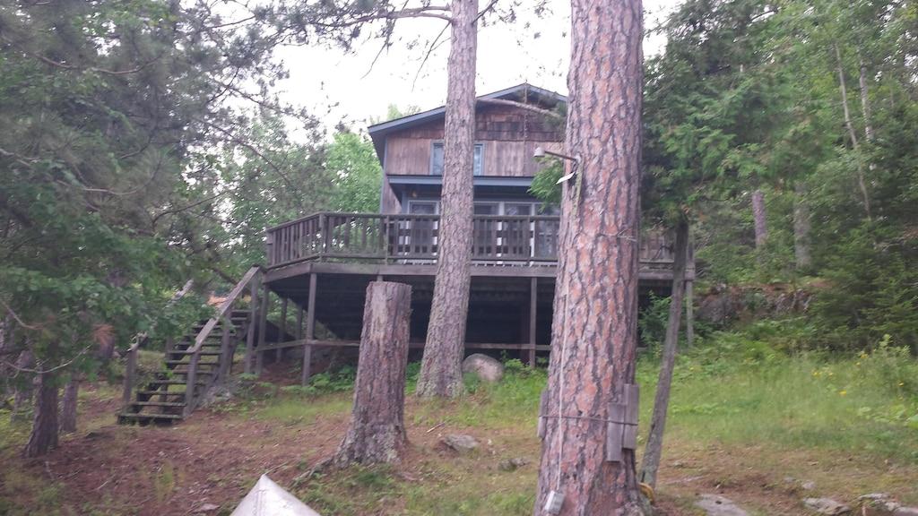 Pet Friendly Treehouse Rental in Minnesota