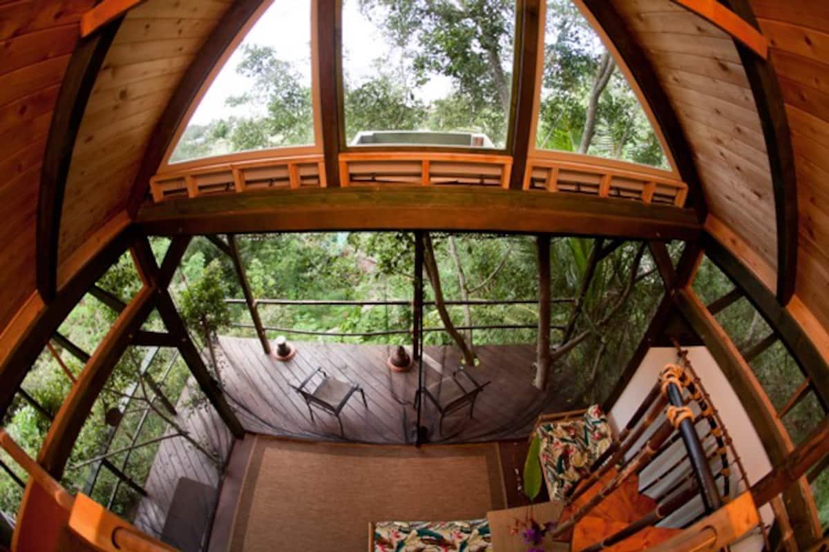 Sunset Beach Temple Treehouse Hawaii Airbnb