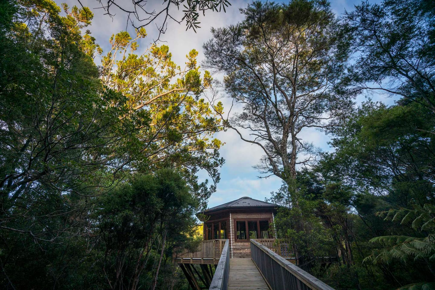 AWAY Treehouse - Airbnb New Zealand