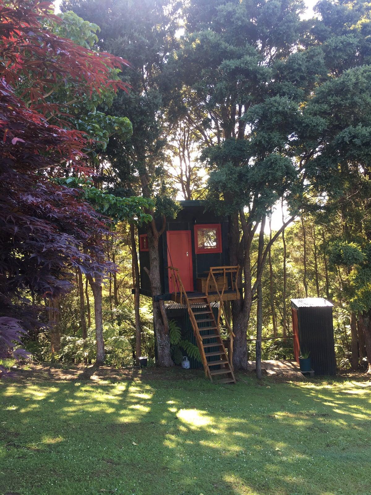Beautiful little hut nestled amongst the trees