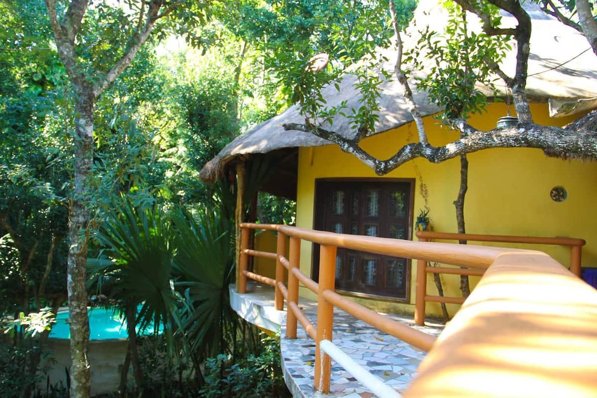Treehouse Bungalow Salamandra Mexico AirbnbTreehouse Bungalow Salamandra Mexico Airbnb