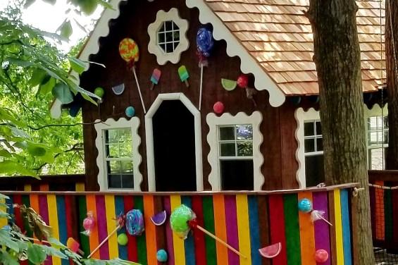 Explore our Treehouse Adventure Park