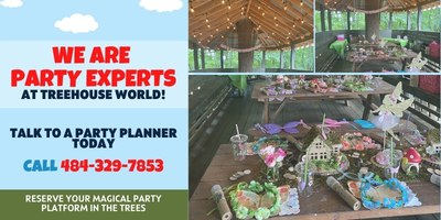 Tree House World Kids Birthday Party Experts