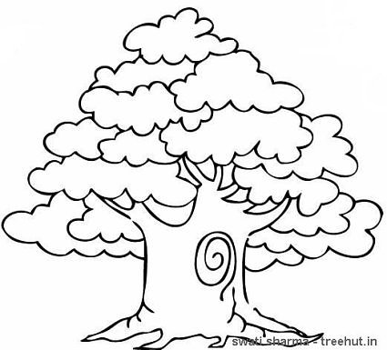 trees coloring pages # 9