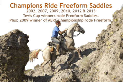 Champions ride in Freeform treeless saddles