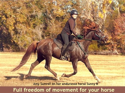 Freeform treeless saddles offer full freedom of movement for your horse