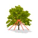 Системы стабилизации крон и стволов деревьев