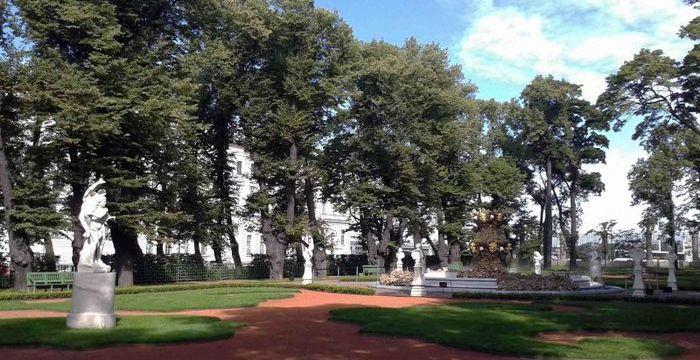 Система COBRA будет установлена на историческом дубе в Летнем саду Санкт-Петербурга.