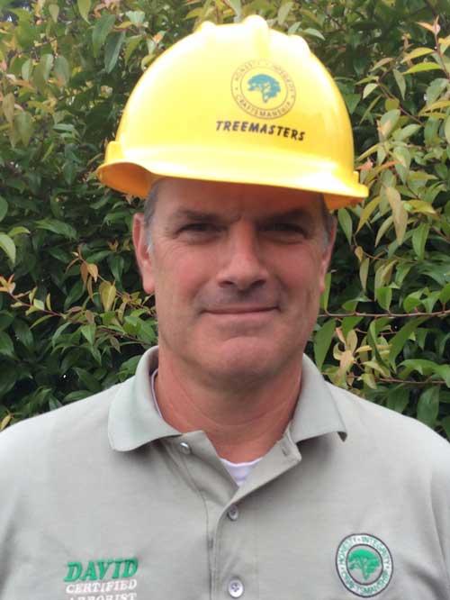 David Orlandi