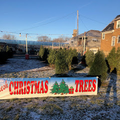 Christmas Tree Front Lot