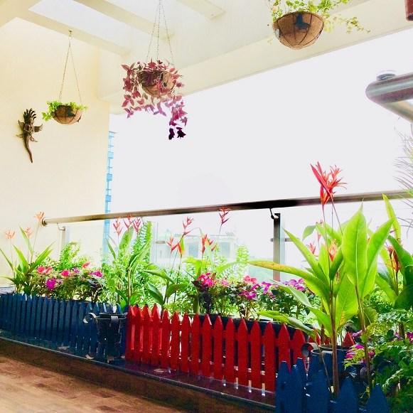 Apartment balcony garden