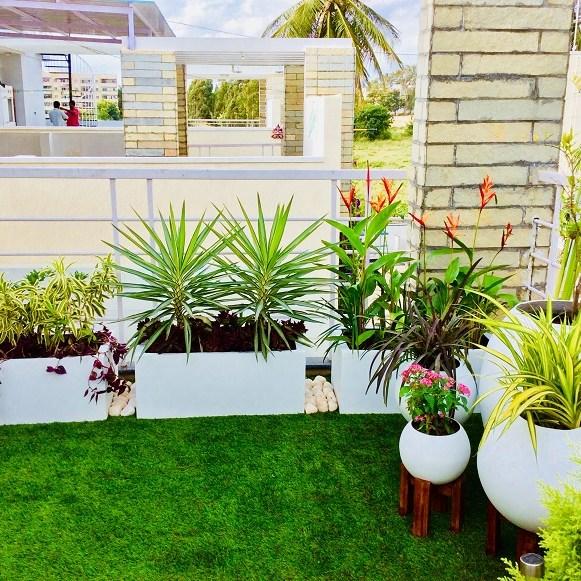 Small Terrace Garden