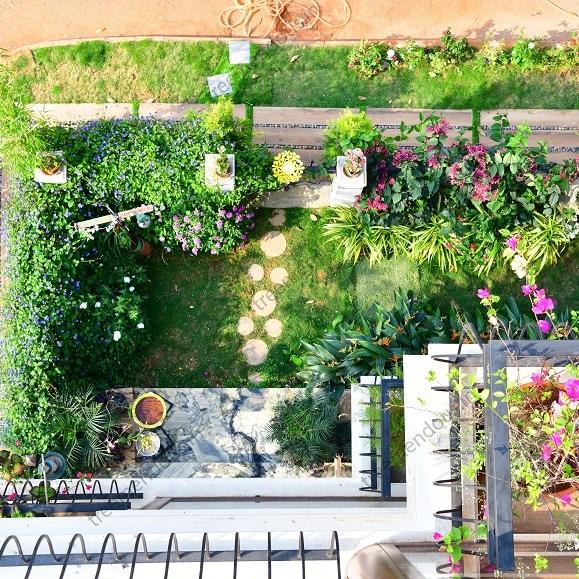 Villa landscaping