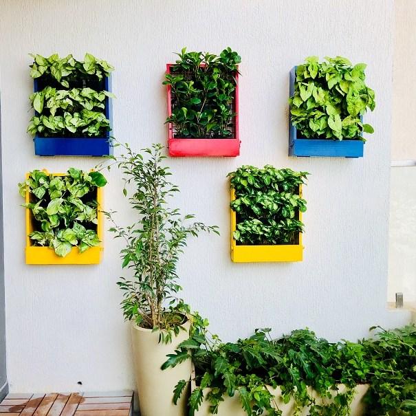 home vertical garden