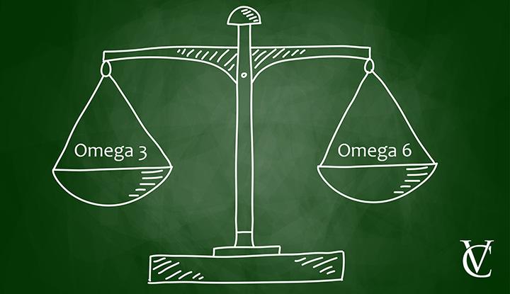treeninglife-article-1-nutrition-balance-omega-3-lifestyle-musculation-vegetarien-végan