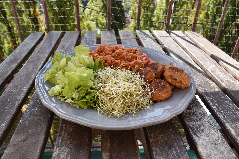 Les super aliments du sportif végétarien / vegan : les graines germées