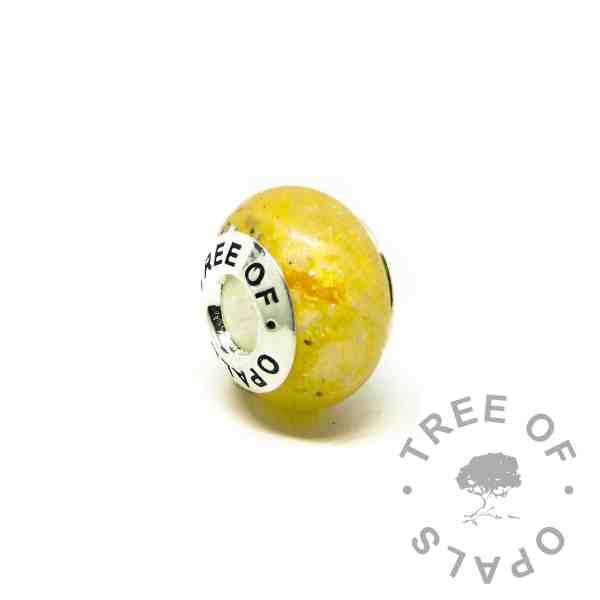 chimera yellow ashes charm