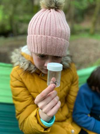 Image of child holding a jar with insect in it