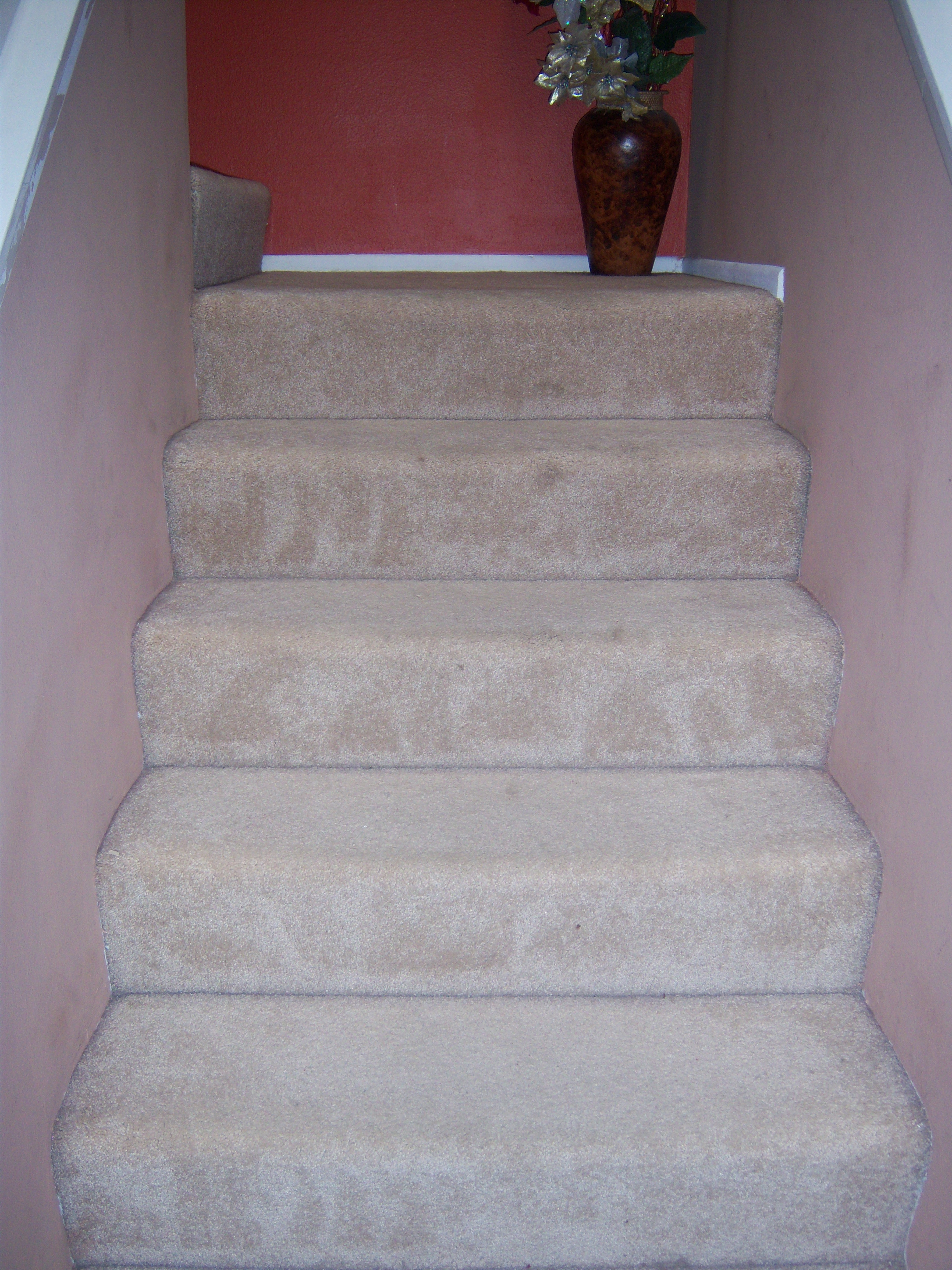 Freshly vacuumed stairs!