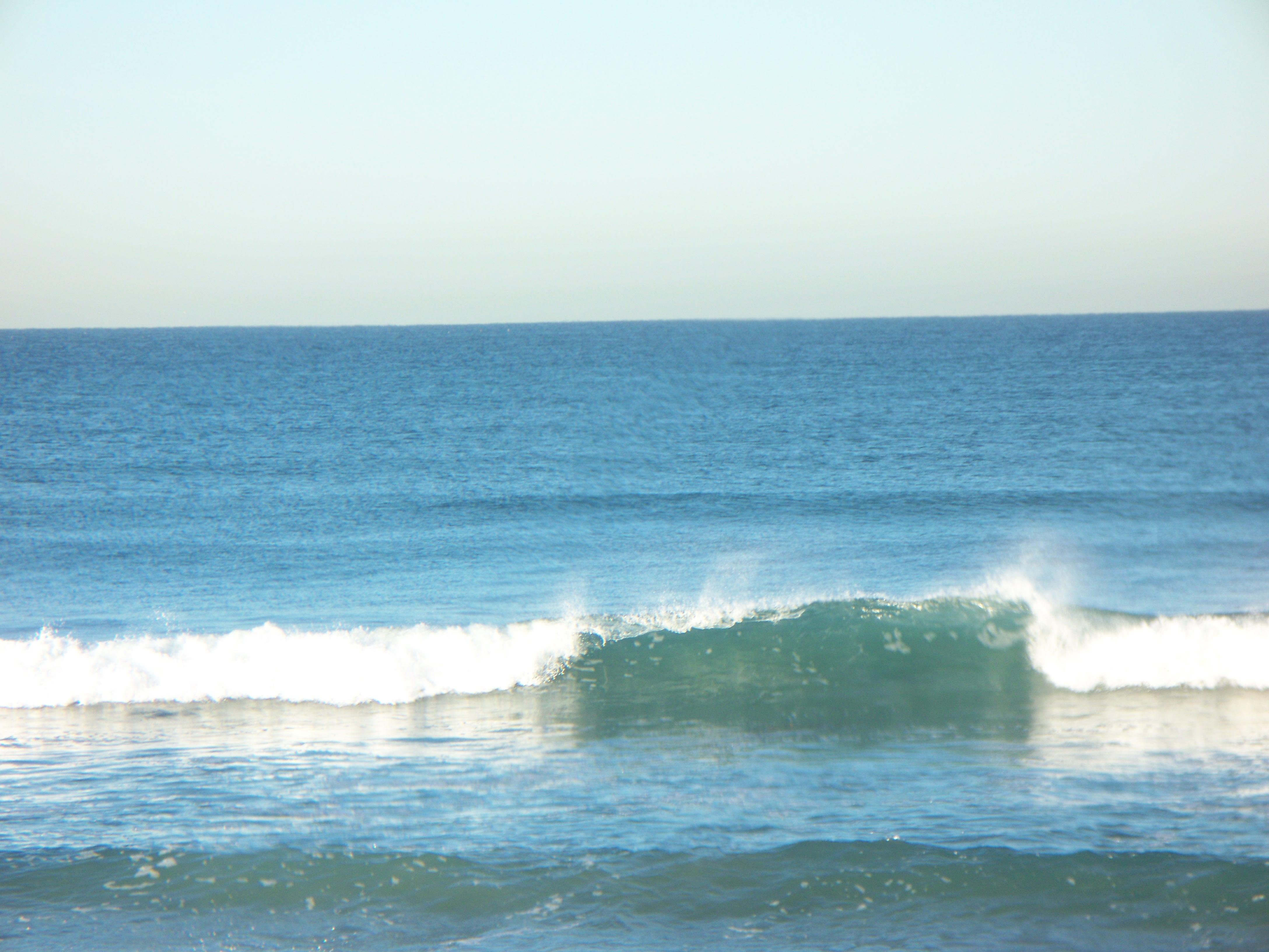 Fall season surf at Torrey Pines State Beach