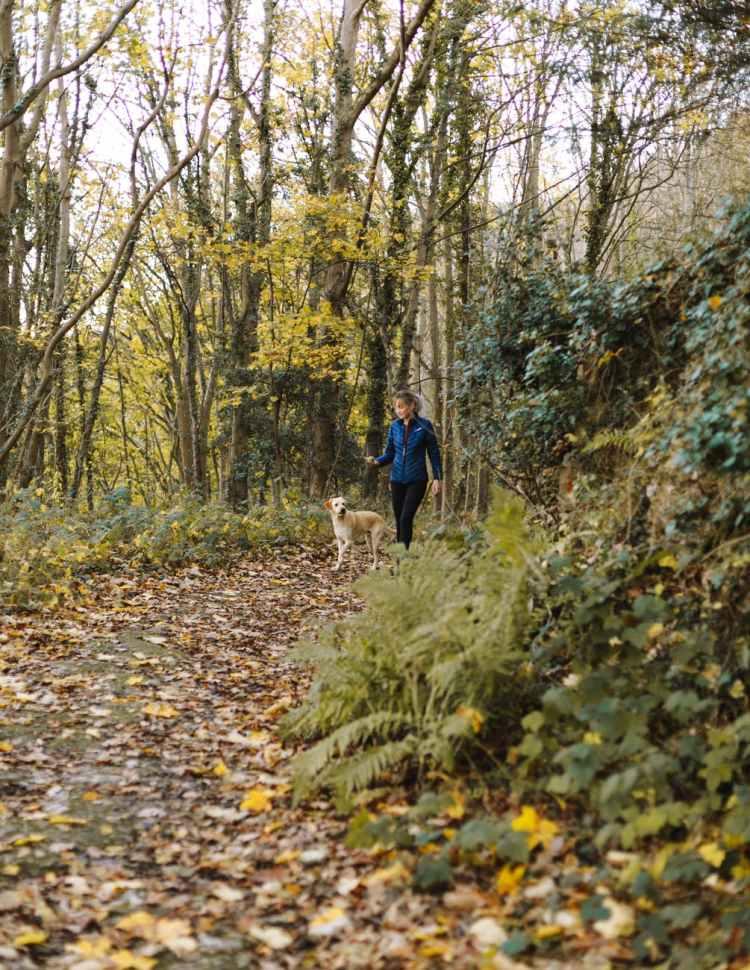 woman and dog walking at woods