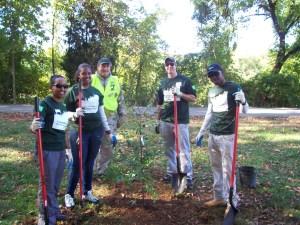 team planting tree