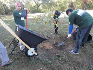 TD Bank volunteers used pickaxes on the rocky ground, hauled water long distances, and worked unceasingly.