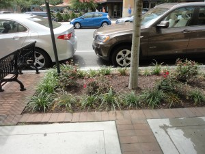Large soil panels can also have flowers as a deterrent to walking on tree roots.
