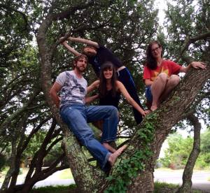 Southern Live Oaks make great climbing trees!