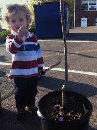 child with tree