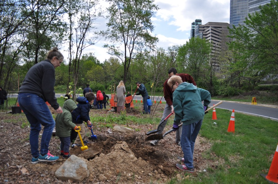 It took many shovels to make light work of planting trees Sunday. Photo by Tree Steward Bill Anhut.