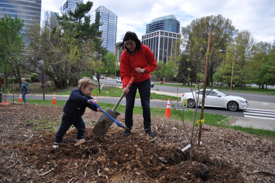 Parent and child plant a tree.