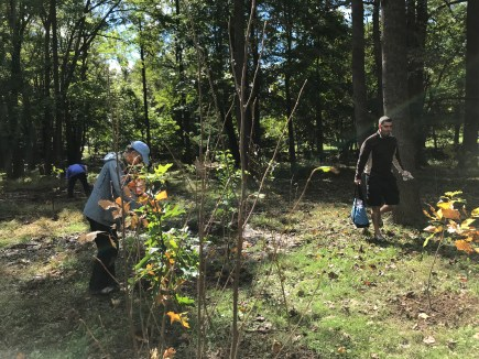 Joanne Hutton, center, in blue cap, checks the planting level of saplings installed in BonAir Park as volunteers tidy up.
