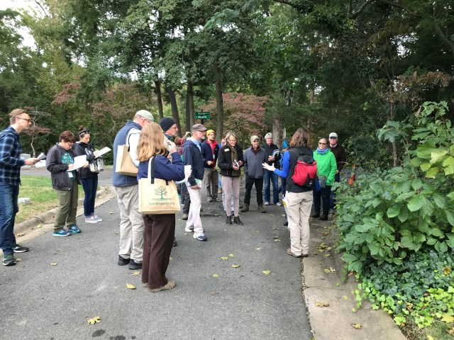 Tree Steward trainees take notes, sketch leaves, collect leaf samples and listen carefully as instructor Emily Ferguson (red backpack) leads them on a tree identification walk in Ivy Hill Cemetery on Oct. 28, 2018. In an unusually late season for leaf color, only dogwoods were notably absent their green chlorophyll at the end of October.