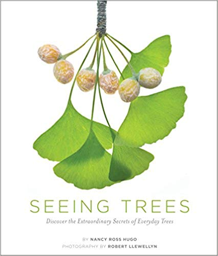 Cover: Seeing Trees
