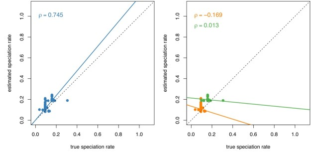 Figure 6. Pooling parameter estimates among trees can be misleading. We estimated branch-specific parameter estimates for two simulated trees using BAMM, and compared the true speciation rate for each branch (x-axis) against the estimated speciation rate for each branch (y-axis). Right panel. BAMM is intended to estimate the branch-specific parameters (speciation and extinction rates) of individual trees. When we appropriately estimate the correlation between the estimated and true branch-specific speciation rates for each tree separately, we observe that the slope of the regression for each tree is ~zero (i.e., the true variation and estimated variation in branch-specific speciation rates is uncorrelated). Left panel. When we assess the relationship between the true speciation rate and the estimated speciation rate (either by fitting a linear regression or computing Spearman's correlation) across both trees, we observe a very strong (and completely spurious) positive relationship. This positive correlation is spurious because it is an artifact of the difference in the average (overall) speciation rate in these two trees.