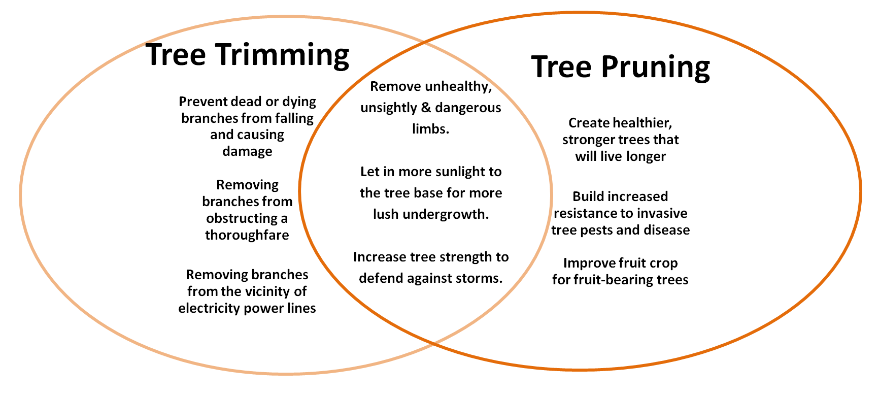 Venn Diagram comparing tree trimming with tree pruning