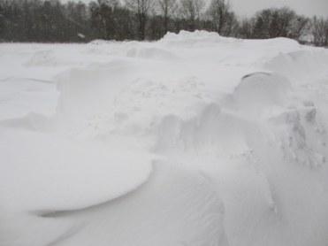 Snowdrift...