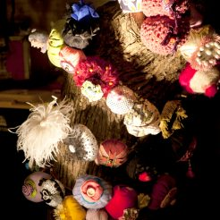 Boobie Tree, festival night closeup