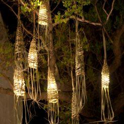 Ed &Charlottes Tree, festival night
