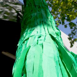 Tree Wrap, 2012