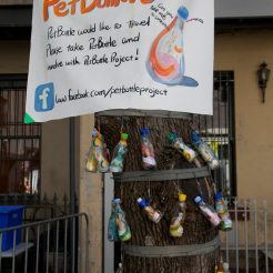 Mihos Pet Bottle Tree with poster