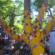 Venerated Jacaranda Tree, detail2