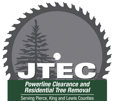Expert Tree Services in Greater Puyallup | Joaquin's Tree Expert Company