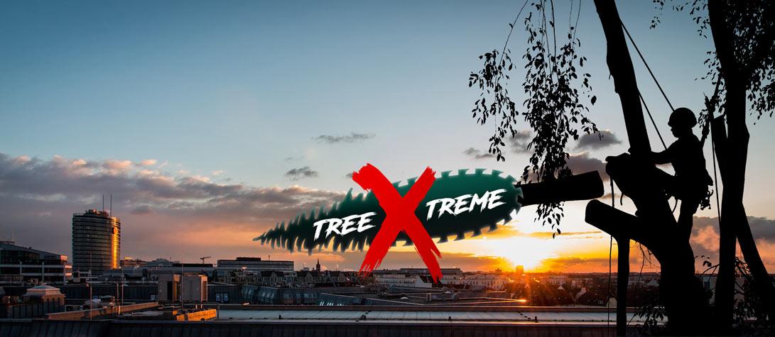 Baumpflege Düsseldorf | treeXtreme Baumkletterer Düsseldorf