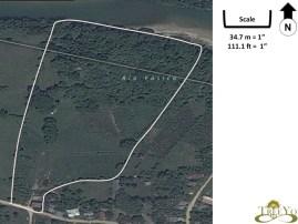 Taino Organic Farm satellite view